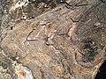 Monte Matambo em Tete - panoramio - Nelson Deolinda Amin… (11).jpg