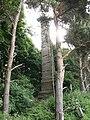 Monument, Baldersby Park - geograph.org.uk - 849333.jpg