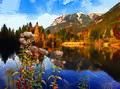 Moorweiher im Herbst.jpg