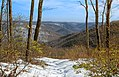 Moss Hollow Lookout (2) (8546234266).jpg