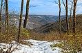 Moss Hollow Lookout (2) (8546234266).jpg