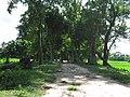 Mound of Chandraketugarh 06.jpg