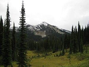 Mount Revelstoke National Park - Image: Mount Revelstoke 1