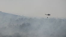 Cypriot Police Bell 412EP participating in fire fighting efforts in Israel, during the 2010 Mount Carmel forest fire