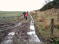 Muddy track - geograph.org.uk - 121734.jpg