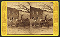 Mule cart, from Robert N. Dennis collection of stereoscopic views 2.jpg