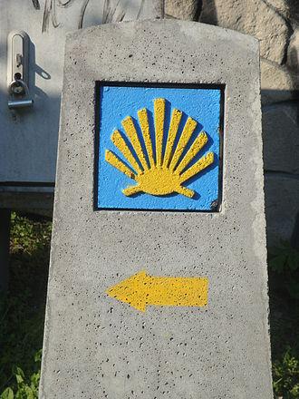 Lesser Polish Way - Image: Muszla Jakubowa w Sandomierzu