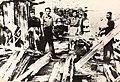 N. Ceaușescu și alți deținuți politici în lagărul de la Tg. jiu.jpg