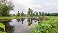 NSG Rurmaeander zwischen Floßdorf und Broich WDPA ID 165262 , FFH-Gebiet Kellenberg und Rur zwischen Flossdorf und Broich WDPA ID 555520333 Naehe Pickartzhof III.jpg