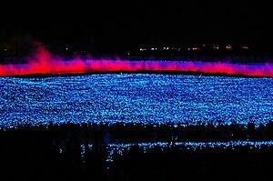 Kuwana, Mie - Illumination in Nabana Park