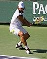Nalbandian backhand 2008.jpg