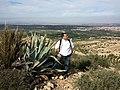 Nature des Monts Beni Chougranes Mohammadia 08.jpg