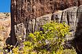 Navajo Sandstone (4080889314).jpg