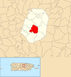 Negros, Corozal, Puerto Rico Barrio of Puerto Rico