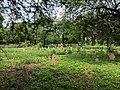 Nicholson (Or Kashmiri Gate) Cemetery Kashmiri Gate Delhi IMG 20180718 140618.jpg