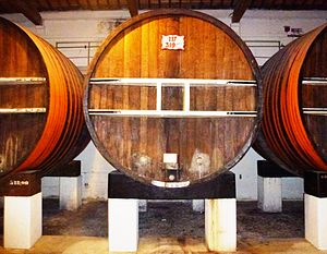 Noilly Prat - Barrels for maturing the wine