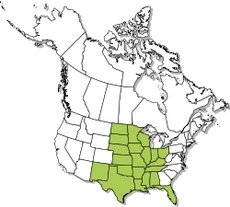 North American Distribution map of the Smooth softshell turtle.png