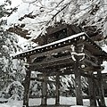 Ogimachi, Shirakawa, Ono District, Gifu Prefecture 501-5627, Japan - panoramio (23).jpg