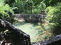 Old Mill Spring Austin.jpg