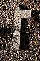 Old cemetery in Küstrin-Kietz 130.JPG