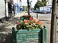 Old planters on Clarendon Place - geograph.org.uk - 3109493.jpg