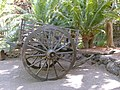 Old wagon in the Oasis Park - Fuerteventura.jpg