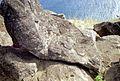 Orongo - Easter Island (3845509088).jpg