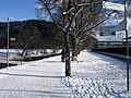 Ottiliensteg mit Gedenkbaum an der Dreisam in Freiburg-Waldsee.jpg