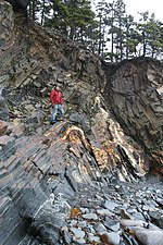 "Anticline and quartz ""saddle reef"" vein in the Halifax Formation (Cambrian), The Ovens, Nova Scotia."