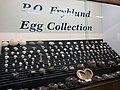 P. O. Fryklund Egg Collection, Roseau County Museum and Interpretive Center, Roseau, MN.jpg