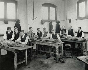Philadelphia College of Osteopathic Medicine - PCOM Archives: 1908 Dissection Lab