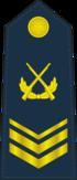 PLAAF-0707-3CSGT.png