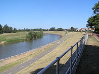 PLJohnson Maitland NSW river walk.jpg