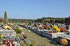 PL - Mielec - cmentarz komunalny - 2011-11-02 - 007.JPG