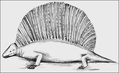PSM V73 D569 Restoration of naosaurus.png