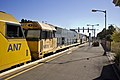 Pacific National (locos AN7, NR 16 and NR 106) freight train passing Junee Railway Station (1).jpg