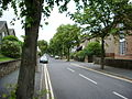 Palatine Avenue, Lancaster - geograph.org.uk - 904973.jpg