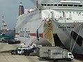 Panstar cruise03.jpg