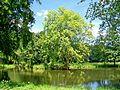 Parc Jean-Jacques Rousseau (60), le gouffre.jpg