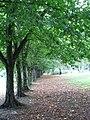 Park Zachodni we Wrocławiu 05.jpg