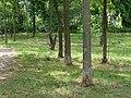 Park at Wasserstadt Spandau 2019-06-11 06.jpg