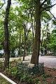 Parque España - Ciudad de México - 6 -.jpg