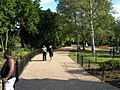 Path in Dulwich Park - geograph.org.uk - 203767.jpg
