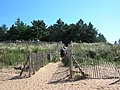 Path to Holkham Beach - geograph.org.uk - 544078.jpg