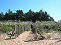 Path to Holkham Beach - geograph.org.uk - 544078.jpg