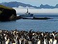 Patrouilleur austral Albatros (mars 2013) - panoramio (1).jpg