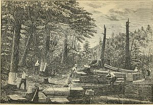 Bark mill - Peeling bark for the tannery in Prattsville, New York, during the 1840s, when it was the largest in the world.
