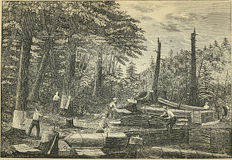 Tanbark - Workers peeling hemlock bark for the tannery in Prattsville, New York, United States.