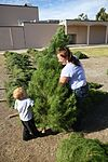 Peltzer Pines Tree Farm donates 150 trees to service members and their families 131216-M-EG514-008.jpg