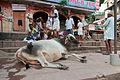 People of Varanasi 04.jpg